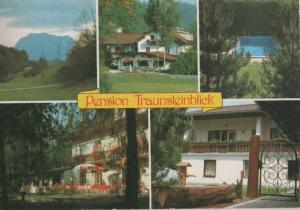Österreich - Wiesen - Österreich - Pension Traunsteinblick