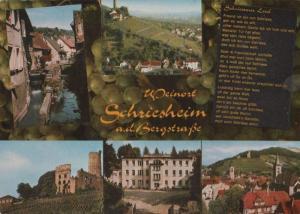 Schriesheim - 5 Bilder