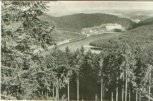 Oberhof v.1955 Die Lütsche (18299)