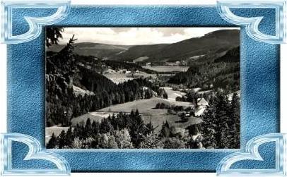 Titisee v.1961 Blick vom Bärental (17409)