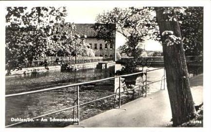 Dahlen v.1956 Am Schwanenteich (16603)