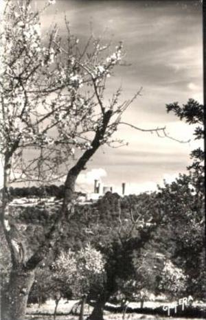 Palma da Mallorca v.1960 Bellver Castle (16871)