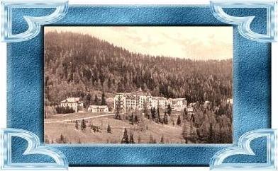 Semmering v.1924 Hotel Panhans .(10350)