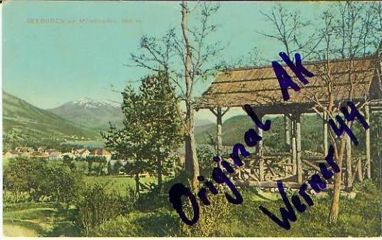 Seeboden v.1913 Stadt & Hütte.(19937)