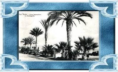 San Remo v.1912 La Passeggiata (9852)