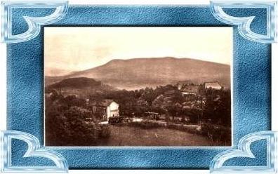 Monnetier-Maire v.1924 Hotel Belle-Vue .(10508)