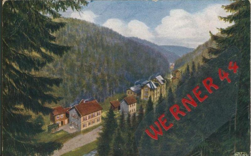 Friedrichsroda v. 1922  Der Grund  ()  --  siehe Foto !!  (29443) 0