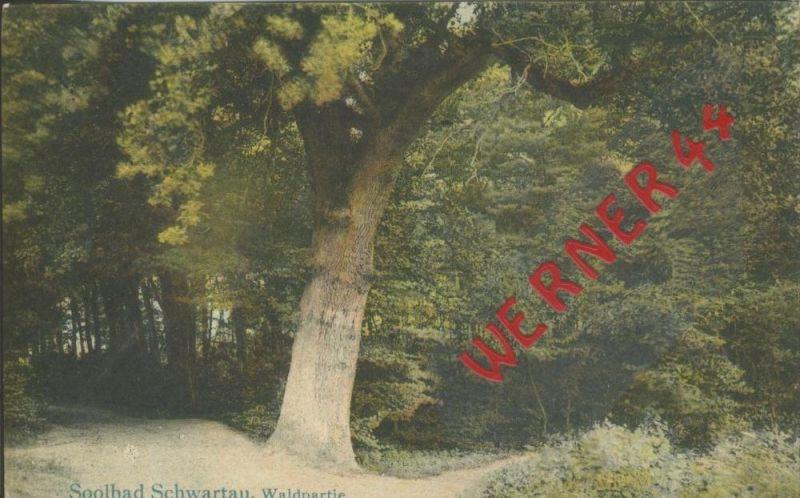 Bad Schwartau v. 1918  Waldpartie  ()  --  siehe Foto !!  (29456) 0