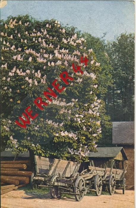 Landsberg v. 1918  Bauerngehöft mit Pferdefuhrwerk-Wagen   ()  --  siehe Foto !!  (29483) 0