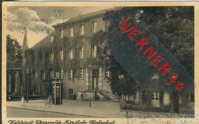 Eberswalde v. 1953  Forstliche Hochschule  --  siehe Foto !!  (29219) 0