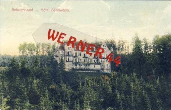 Alpnach von 1910 Hotel Bärenstein (21631)
