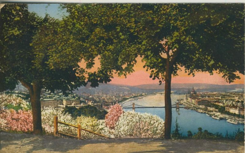 Budapest v. 1920  Aussicht vom Gellertberge  (50950)