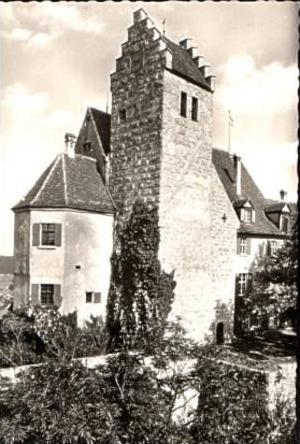 Schloß Werenwag v.1954 .(15170)
