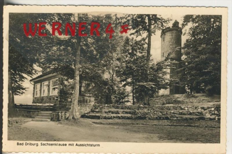 Bad Driburg v. 1952  Sachsenklause mit Aussichtsturm   (37662)