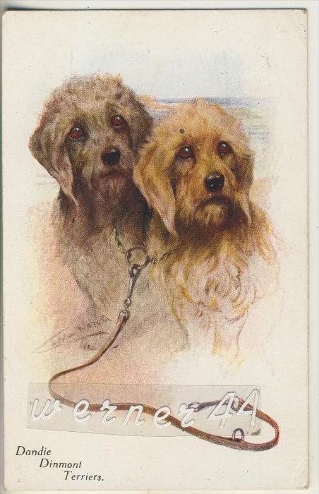 2 Dandie Dinmont Terriers v. 1916  (5599-18)