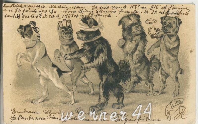 5 Hunde unterwegs auf Tour v.1904 (23548-25)
