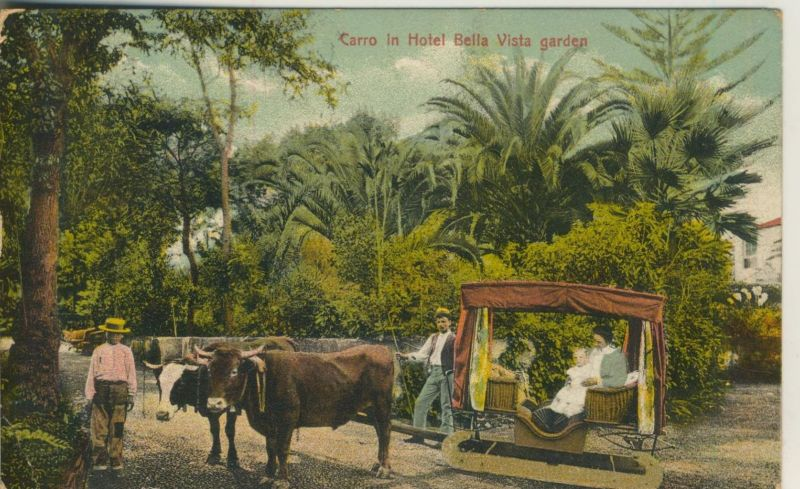 Carro v. 1926  Carri in Hotel Bella Vista garden (50957)