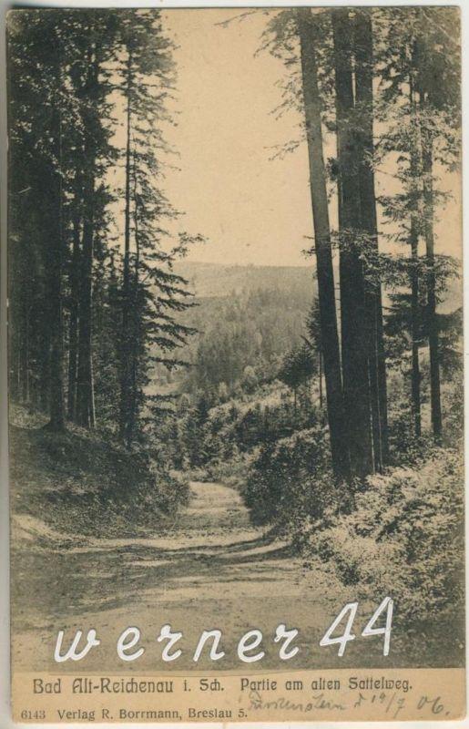 Bad Alt Reichenau v.1906  Der Sattelweg (12600-01)