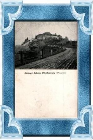 Blankenburg v.1903 Herzogl. Schloss (8372)
