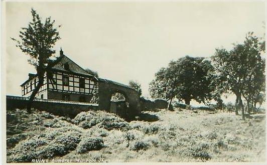 Burgfrey v.1934 Ruine Burgfrey + 1000j. Eiche.(19369) 0