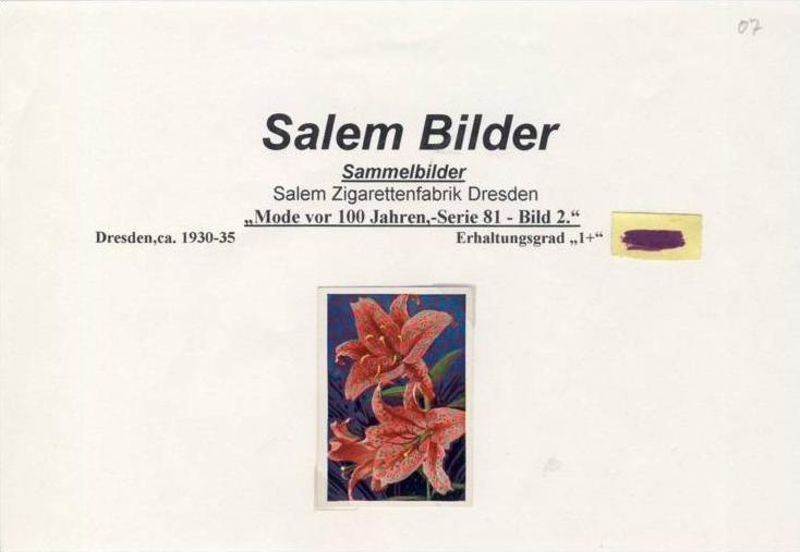 WERBUNGS-Sammelbild,SALEM Zigarettenfabrik-Dresden  --- siehe beschr. !! (07)