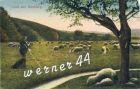 Bild zu Ilsenburg v. 1918...