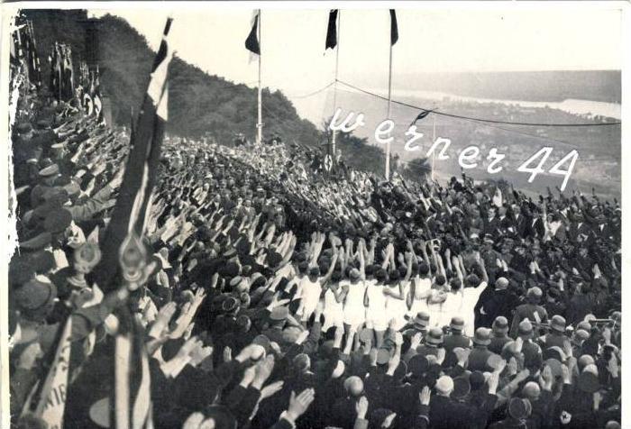 Sammelwerk Nr. 8  v. 1933  Saar bleibt deutsch, Riesenkundgebung am Niederwalddenenkmal -- siehe Foto !!  (32199-7)