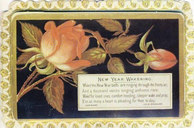 New Year Wakening v. 1983  --  siehe Foto`s !!   (35134)