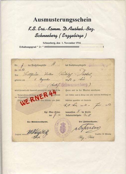 Schneeberg / Erzgebirge v. 1903  Ausmusterungsschein  --  siehe Foto !!   (093)