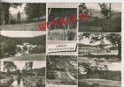 Bild zu Wolfshagen v. 196...
