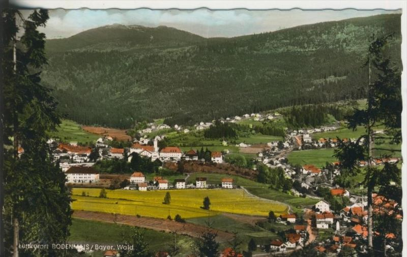 Bodenmais V 1967 Teil Stadt Ansicht 41394 Nr 289617213