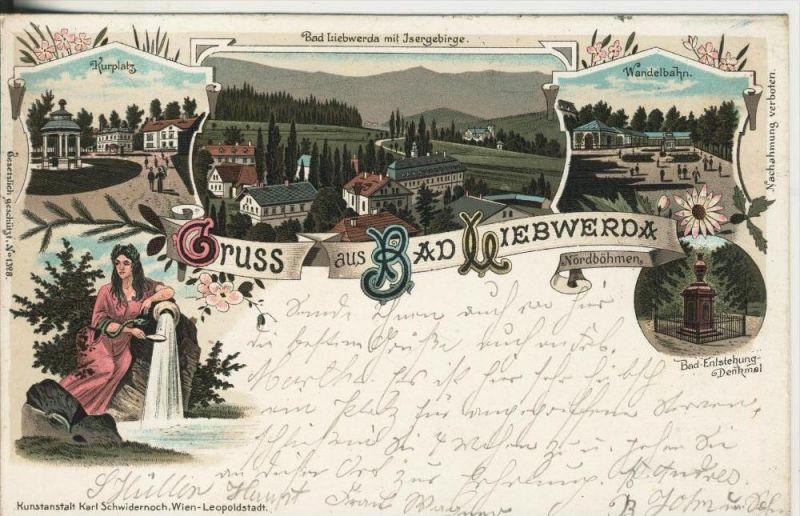 Gruss aus Bad Liebwerda / Nordböhmen v. 1900Schönheit,Kurplatz,Dorf,Wandelbahn,Bad Entstehungs-Denkmal  (45313)