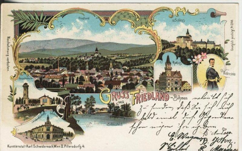 Gruss aus Friedland v. 1900  Dorf,Aussichtsthurm,Lw.-Gebäude,Rathaus,Schloßteich,Schloß,Wallenstein   (45320)