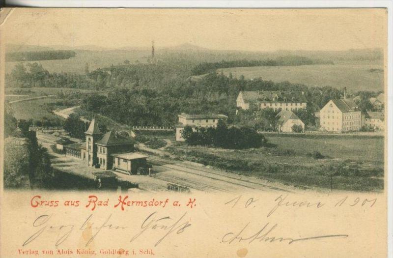 Gruss aus Bad Hermsdorf a.K. v. 1901  Teil-Dorf-Ansicht  (45347)