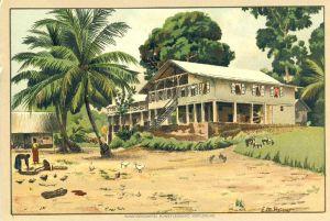 Kamerun v. 1936 Faktorei Plantation - siehe Foto !! (53981-125)
