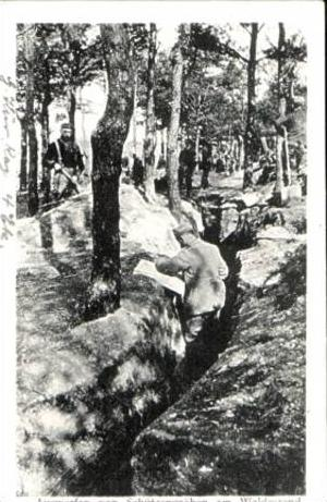 Auswerfen von Schützengräben am Waldesrand v. 1917 (15329)