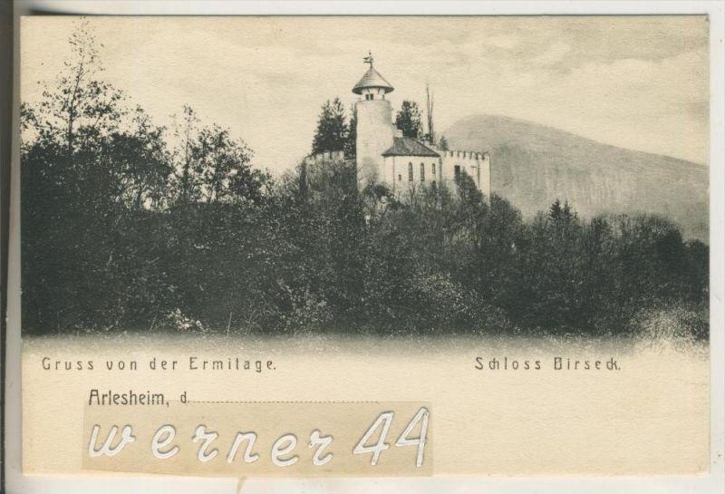 Arlesheim v.1904 Schloß Birseck (14925)