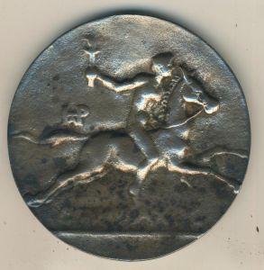 Original Ehrenmedaille der Deutschen Olympischen Gesellschaft  in der Box !! -- RARITÄT --  (9)