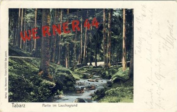 Tabarz von 1905 Partie im Lauchagrund (21786)