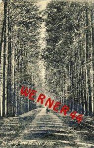 De Steeg v. 1909  Middachter Allee  (33412)