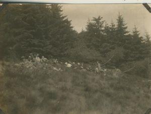 Sterkrade v. 1930  Gruppe des S.G.V. Ortsgruppe -- liegen alle im Gras im Wald  (54246)