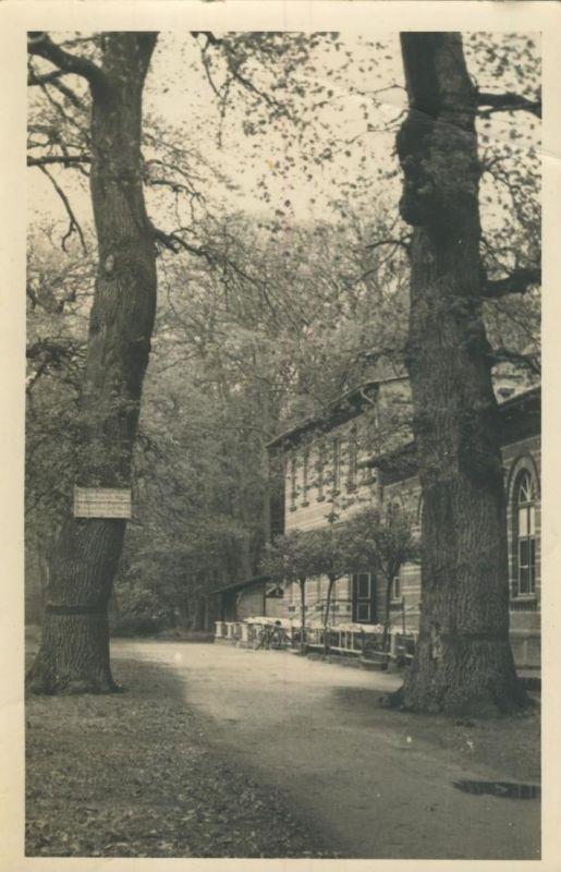 Havelberg v. 1953  Gasthof  (53701)
