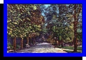 Szliacs v.1920 Allee (4020)