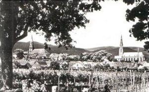 Edenkoben v.1962 Teil-Dorf-Ansicht (16942)