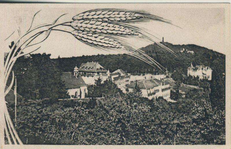 Drei Ähren v. 1944  Dorfansicht (52391)