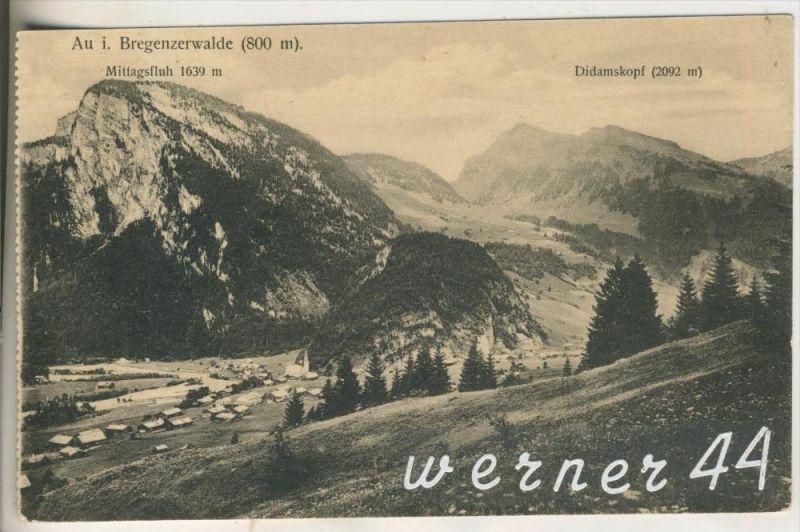Au i. Bregenzerwald .v.1919 Dorfansicht (11925)