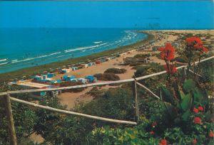 Gran Canaria v. 1982  Playa del Ingles   (56668)