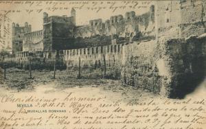 Sevilla v. 1902  Murallas Romanas  (56926)