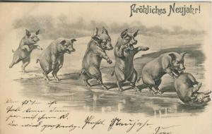 Fröhliches Neujahr v. 1903  Schweine lassen die Sau raus  (57139)