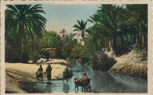 Maroc v. 1967  Scenes et Types - Passage de I`Oued  (53625)